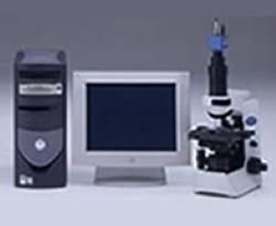 位相差顕微鏡検査